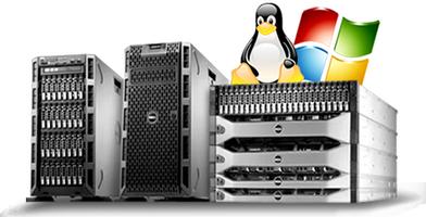 Hosting para paginas web, Web Hosting